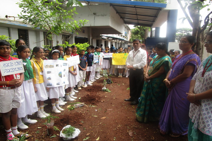 Shaikh Central School-Environment Day