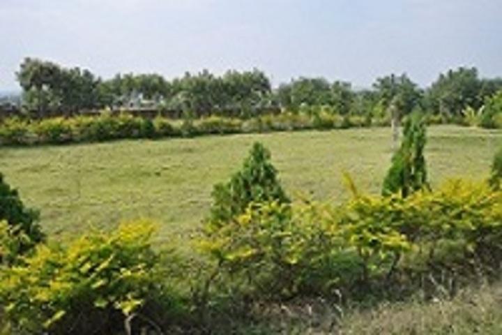Siddha Bharati Vidya Mandir School-Garden