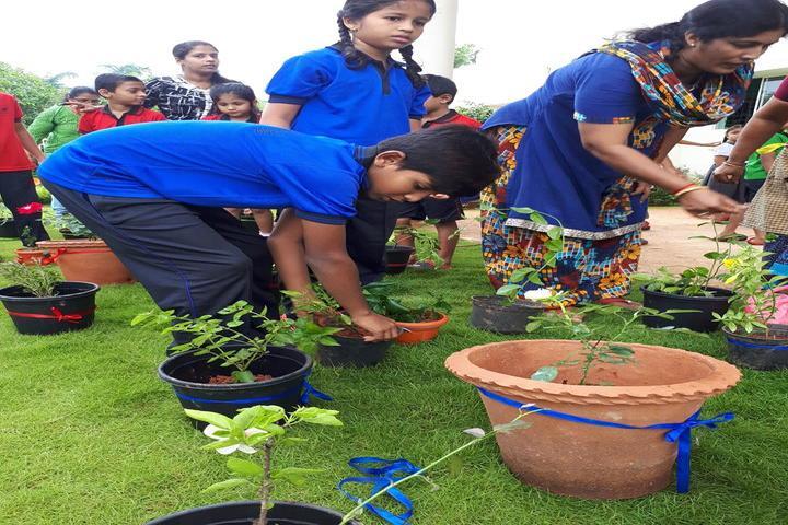 The Cambridge International School-Tree Plantation