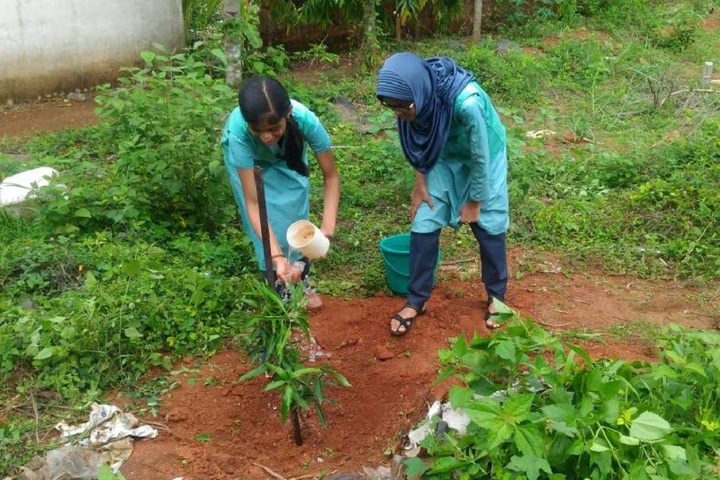 Ace Public School-Environment Day