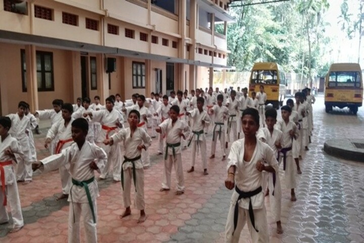Carmel Central School-Karate Activity