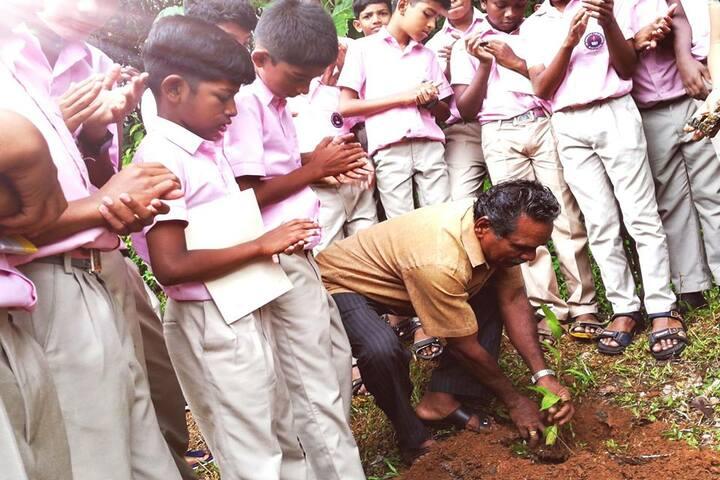 Cooperative Public School-Tree Plantation