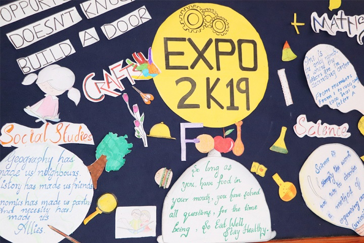 De Paul Public School-Expo 2019