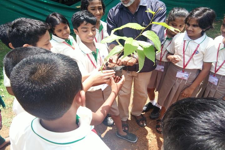 Global Public School-World environment