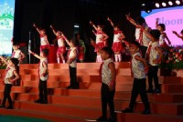 Hill Blooms School-Dances
