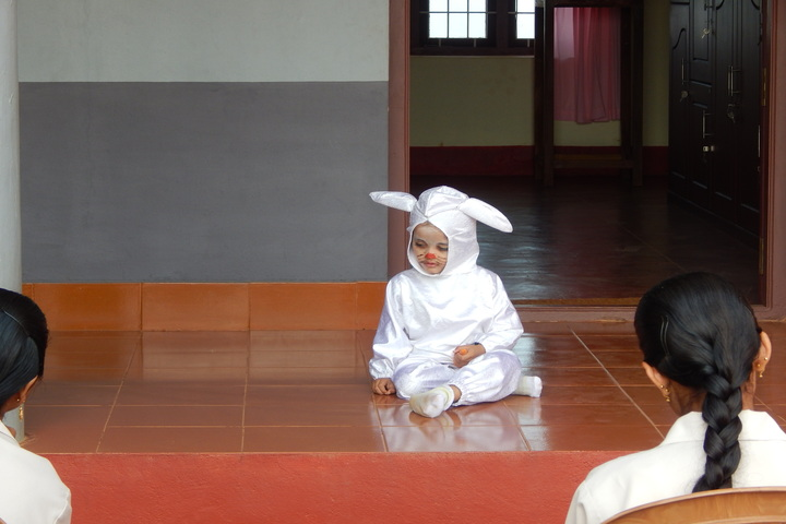 Holy Family Convent Public Scool-Fancy Dress Competition