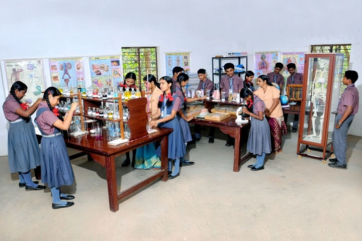 Holy Family Public School-Science Lab