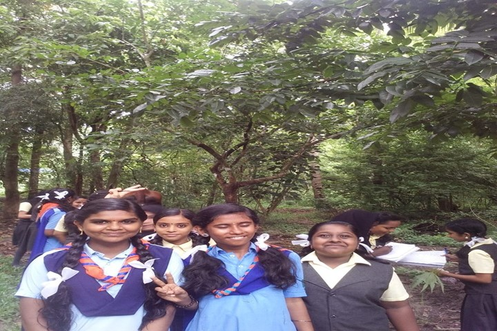 Holy Trinity Vidya Bhavan-Scouts and Guide
