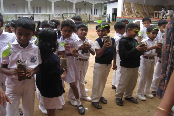 Ideal English School-Earth Day