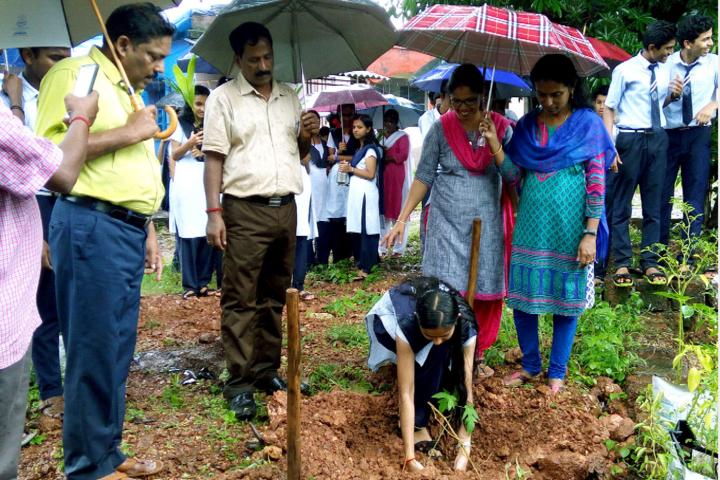 Jawahar Navodaya Vidyalaya-Environment Day