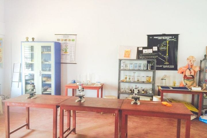 Kaoser English School-Biology Lab