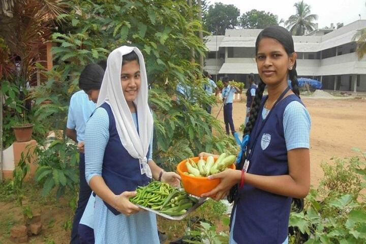 Mahatma Central School-Vegetable Garden