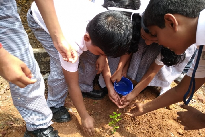 Mar Gregorious Memorial Residential Public School-Tree Plantation