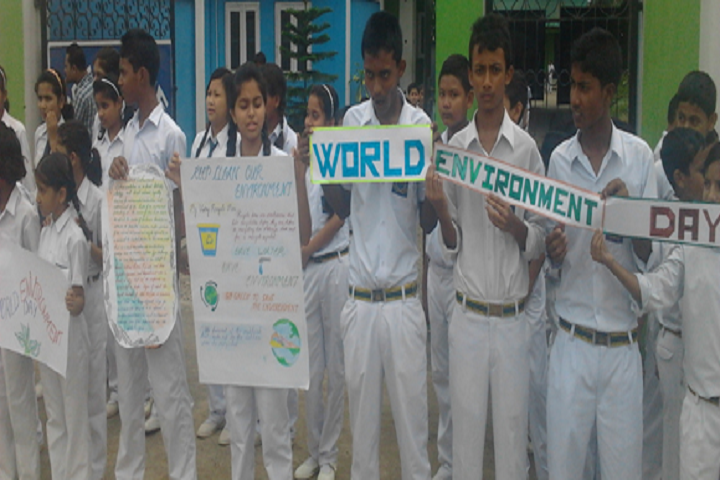 Marrys Public School-Environment Day