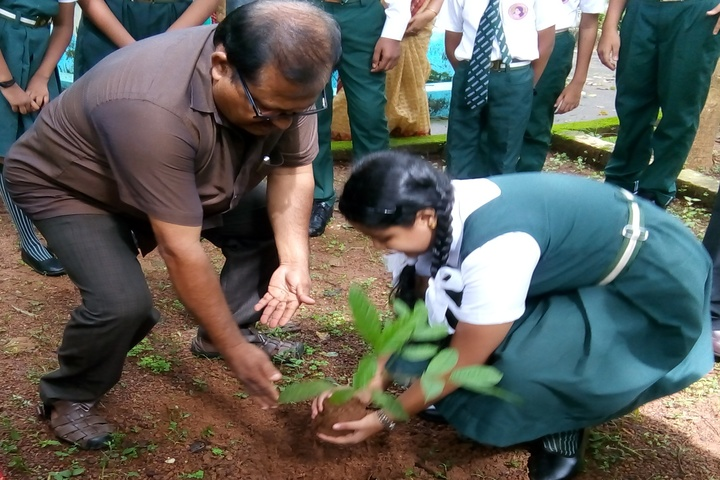 Mother India International Residential Public School-Plantation
