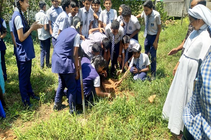 Pratheeksha Bhavan English Medium School-World Environment Day