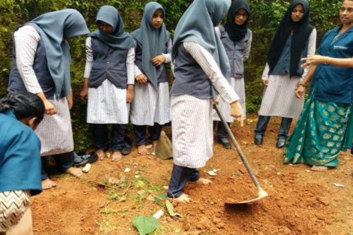 Rahmaniyya Public School-Planting
