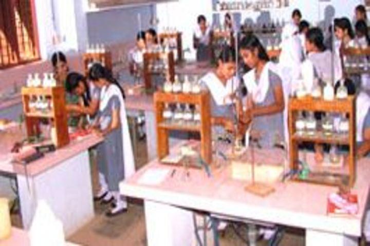 S N Vidya Bhavan Senior Secondary School-Chemistry lab