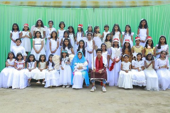 S N Vidya Bhavan Senior Secondary School-Fancy Dress