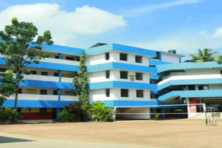S N Vidya Bhavan Senior Secondary School-Playground