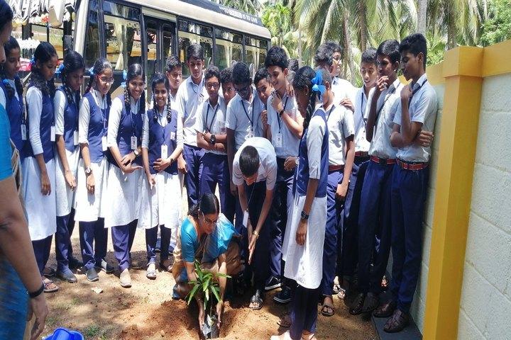 Saraswathy Vidya Niketan-Environment