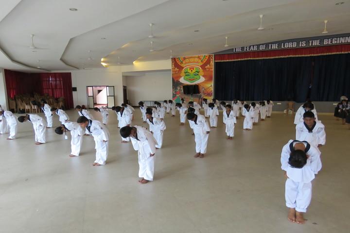 St Julianas Public School-Takewonda