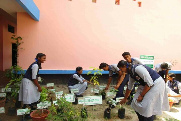 St Mary S Bethany Public School-Environment Day