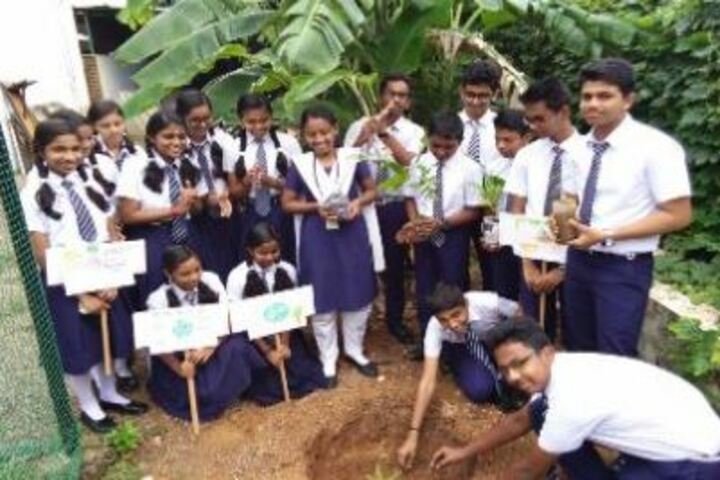 St Marys  Residential Central School-Tree Plant