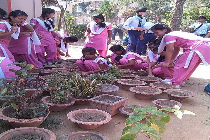 Sri Sathya Sai Vidya Vihar- Plantation Day